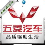 Эмблема Liuzhou Wuling